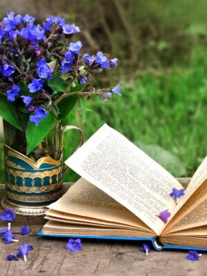 Оргкомитет Поволжского литературного конкурса   «Венец поэзии-2020»