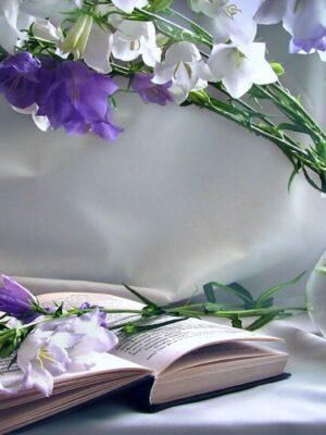 Список финалистов Поволжского литературного конкурса «Венец поэзии-2020»